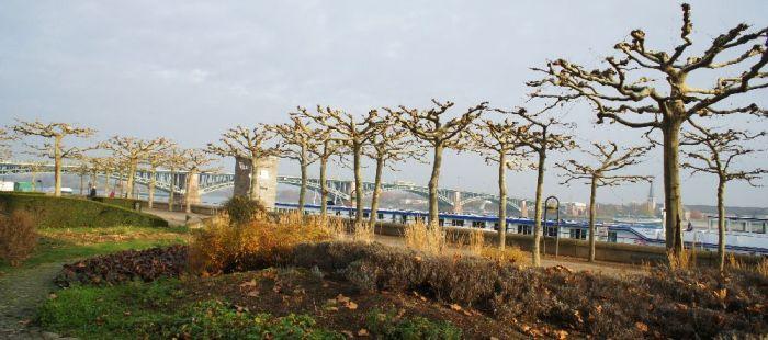 Blick zur Theodor-Heuss-Brücke