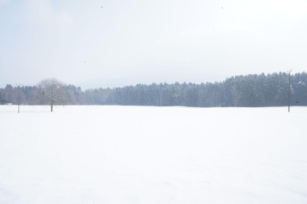 Sigmarszell Februar 2013 (c)moinservus