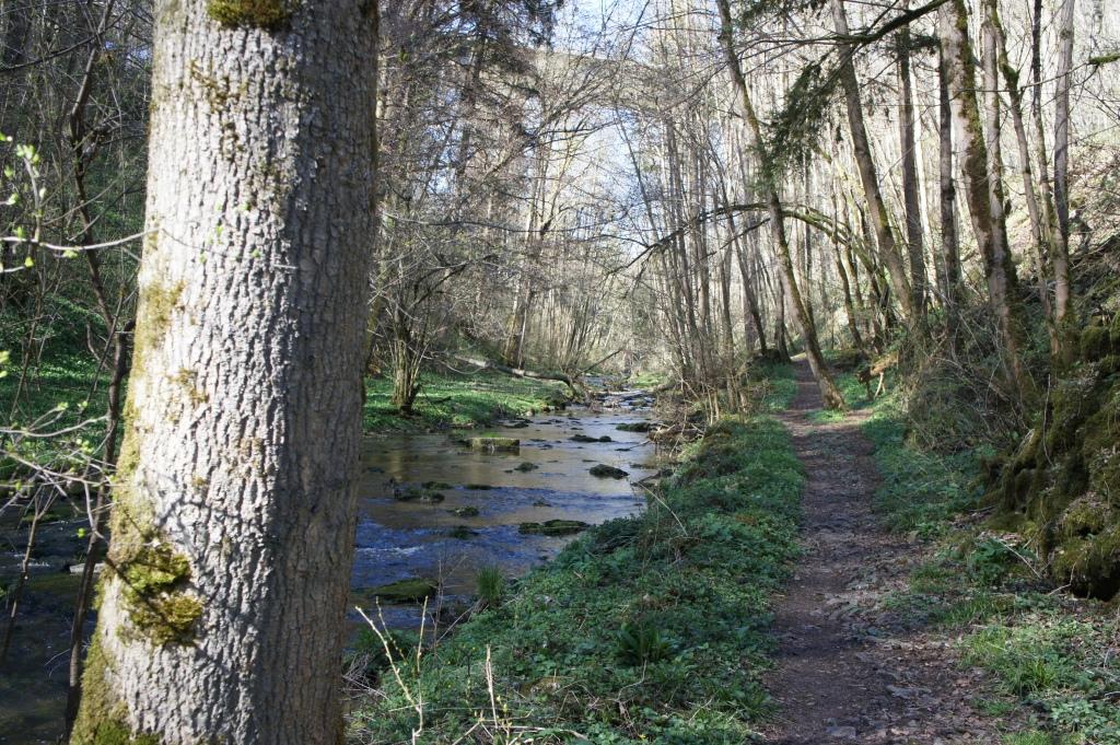 Wanderung an Jagst und Gronach