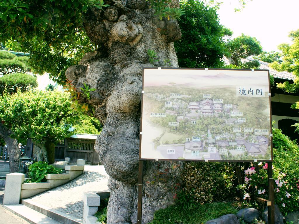 20150601_Kamakura Hase-dera 01