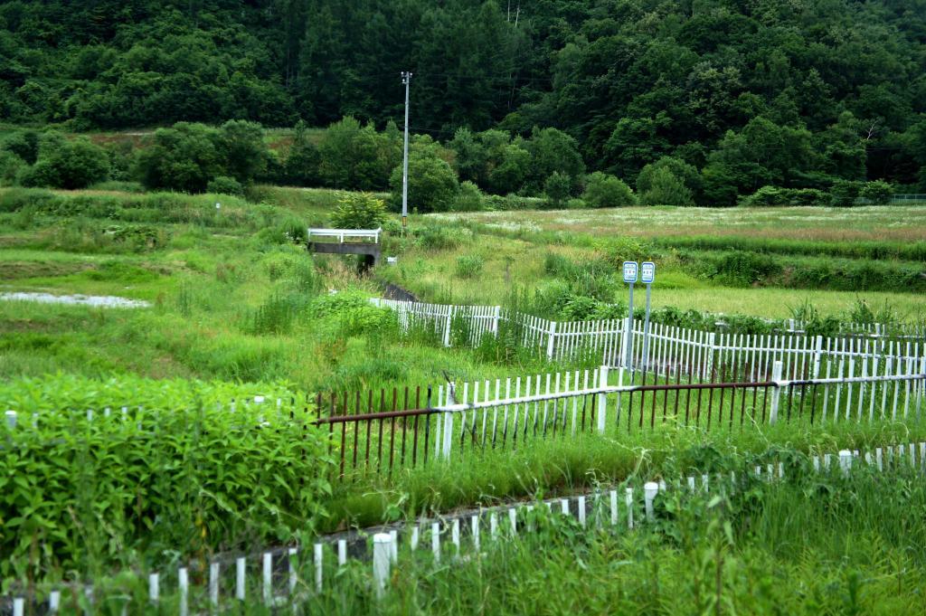 20150718_WWOOF Kamifurano 07
