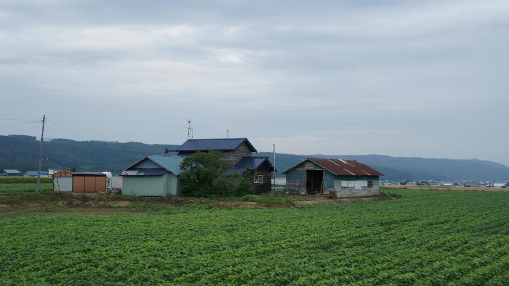 20150721_Tomita Farm 19