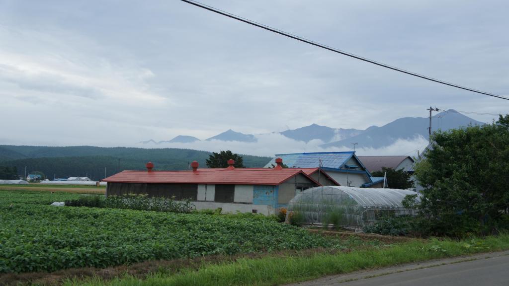20150721_Tomita Farm 20