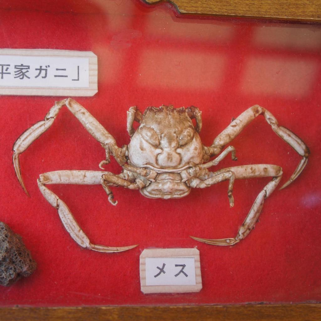 20150930_Shimonoseki 16