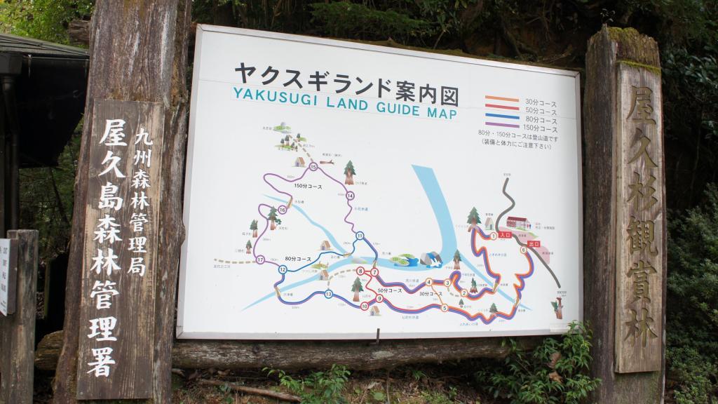 20151021_Yakushima 14