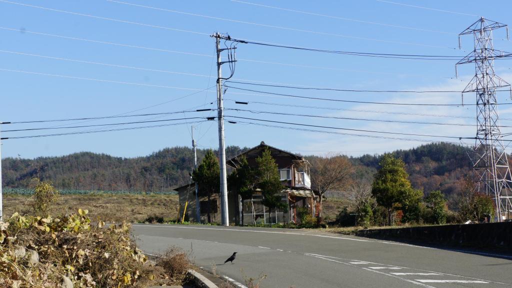 20151207_Akeno 08