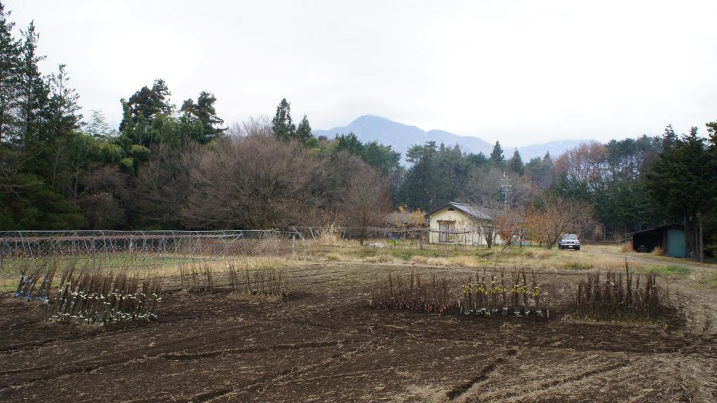 20151210_Nagano 04